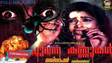 Photo of Kallolam Lyrics | Chuvanna Kannukal Malayalam Movie Songs Lyrics