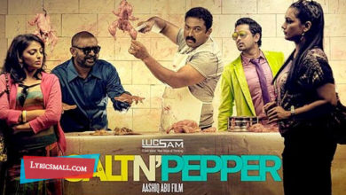 Photo of Chembavu Lyrics | Salt N Pepper Malayalam Movie Songs Lyrics