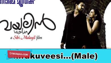 Photo of Chirakuveesi Lyrics | Violin Malayalam Movie Songs Lyrics