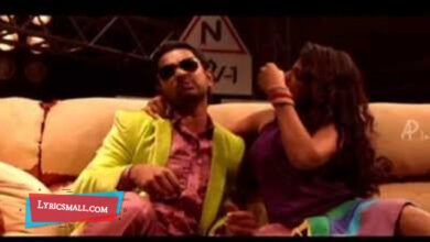 Photo of Aanakkallan Lyrics   Salt N Pepper Malayalam Movie Songs Lyrics