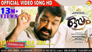 Photo of Chinnamma Song Lyrics | Oppam Malayalam Movie Songs Lyrics