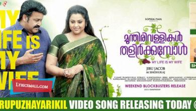 Photo of Oru Puzhayarikil Song Lyrics | Munthirivallikal Thalirkkumbol Malayalam Movie Songs Lyrics
