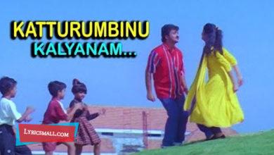 Photo of Katturumbinu Kalyanam Lyrics | Priyam Movie Songs Lyrics