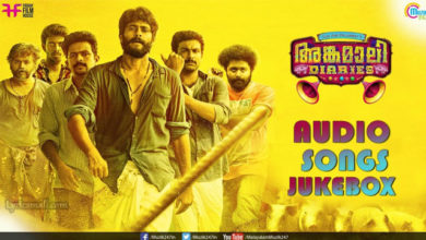 Photo of Thana Dhina Song Lyrics | Angamaly Diaries Thana Dhina Song Lyrics