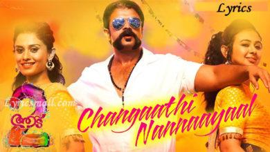 Photo of Changaathi Nannaayaal Song Lyrics | Aadu 2 Movie Songs Lyrics