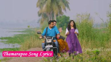 Photo of Thamarapoo Song Lyrics | Kuttanadan Marpappa Movie Songs Lyrics