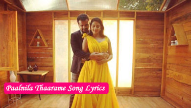 Photo of Paalnila Thaarame Song Lyrics | Kuttanadan Marpappa Songs Lyrics
