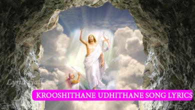 Photo of Krooshithane Udhithane Song Lyrics | Fr.Binoj mulavarickal