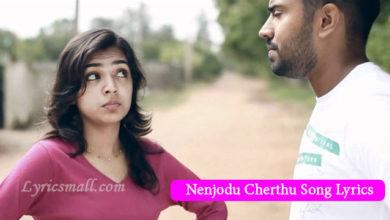 Photo of Nenjodu Cherthu Song Lyrics | Malayalam Album Yuvvh Song Lyrics