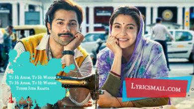 Photo of Tu Hi Aham Lyrics | Sui Dhaaga Movie Songs Lyrics