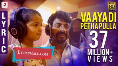 Photo of Vaayadi Petha Pulla Song Lyrics | Kanaa Movie Song Lyrics