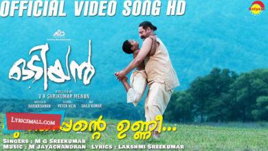 Photo of Muthappante Unni Lyrics | Odiyan Movie Songs Lyrics
