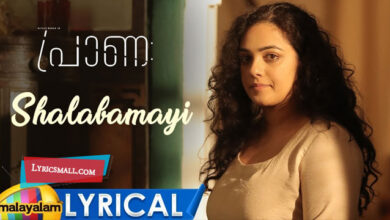 Photo of Shalabhamaayi Lyrics | Praana Movie Songs Lyrics