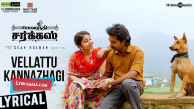 Photo of Vellattu Kannazhagi Lyrics | Mehandi Circus Tamil Movie Songs Lyrics
