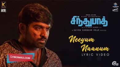 Photo of Neeyum Naanum Paartha Lyrics | Sindhubaadh Tamil Movie Songs Lyrics