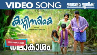 Photo of Neelakasham Lyrics | Kattinarike Malayalam Movie Songs Lyrics