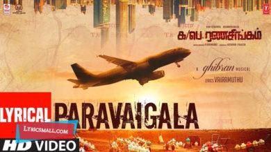 Photo of Paravaigala Lyrics | Ka Pae Ranasingam Tamil Movie Songs Lyrics