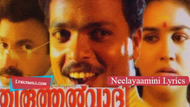 Photo of Neelayaamini Lyrics | Thiruthalvaadi Malayalam Movie Songs Lyrics