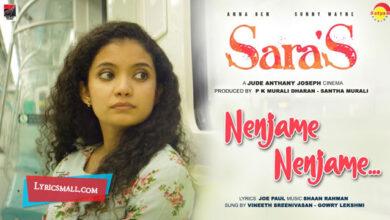Photo of Nenjame Nenjame Lyrics | Saras Malayalam Movie Songs Lyrics
